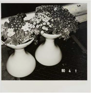 Nobuyoshi Araki: Vintage Prints featured in Office Magazine