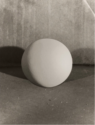 Eggs and Rarities by Paul Kooiker featured in ASX