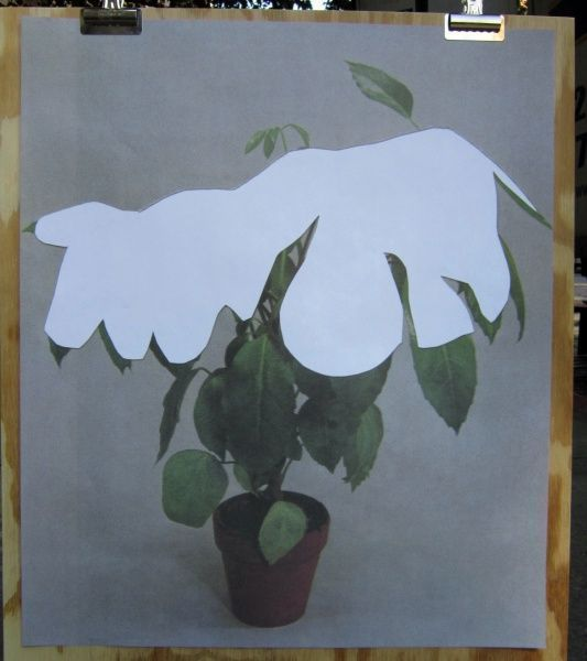 Houseplant Covered with Snow (poster). Ruth Van Beek.