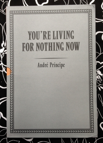 You're Living For Nothing Now. Andre Principe.