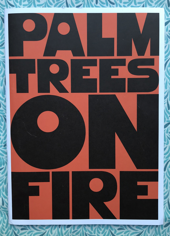 Palm Trees on Fire. Venice Gordon.