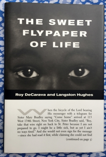 The Sweet Flypaper of Life. Roy DeCarava.