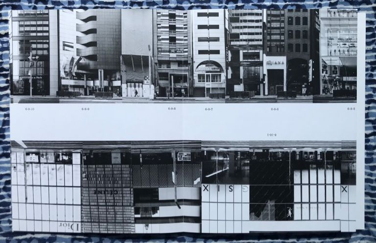 Every Building on the Ginza Strip. Michalis Pichler.