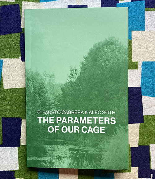 The Parameters of Our Cage. C. Fausto Cabrera, Alec Soth.