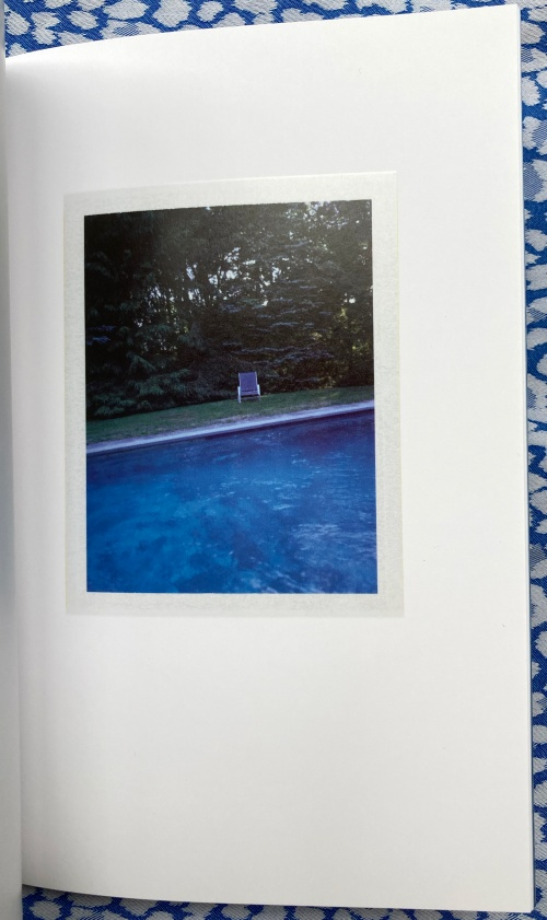 The Summerhouse Pool (print B). Lea Simone Allegria Charles Johnstone, cover illustration and model.