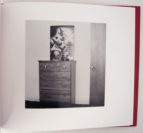 What We Bought: The New World. Robert Adams.