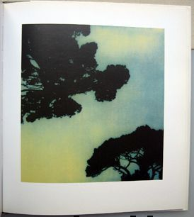 Cy Twombly Photographs. Cy Twombly.