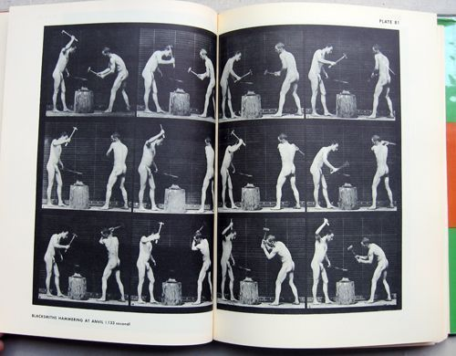 The Human Figure in Motion. Eadweard Muybridge.