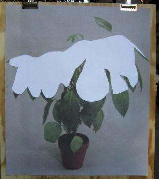 Houseplant Covered with Snow (poster). Ruth Van Beek
