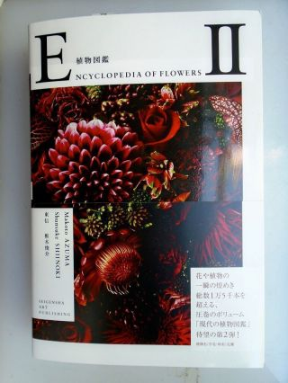 Encyclopedia of Flowers II. Shunsuke Shiinoki.