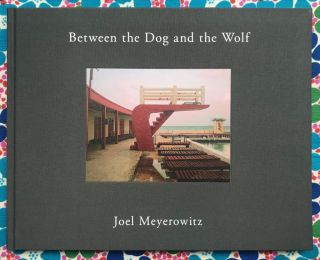 Between the Dog and the Wolf. Joel Meyerowitz
